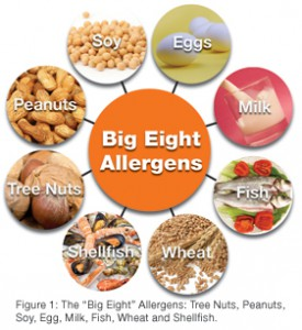 Big-8-Allergens-for-AllerTrain-on-lone-allergy-training-for-restaurants
